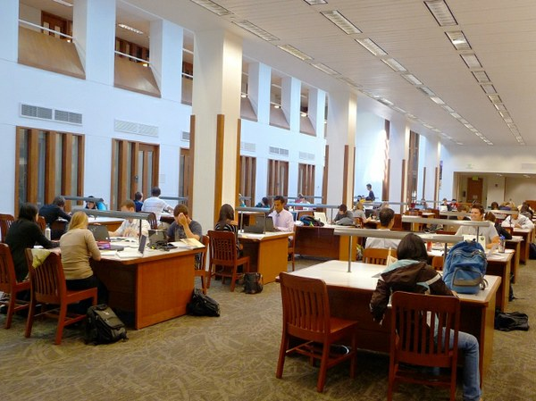 Foster Library Students Studying