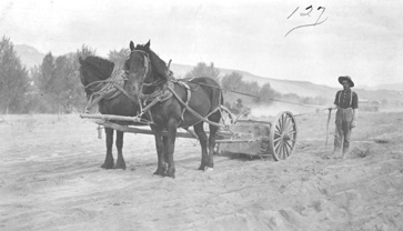 A Man In the Field With His Team and Plow, ca. 1910