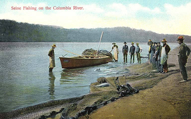 Seine fishing for salmon on the Columbia River, n.d.