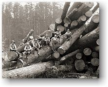 Logging crew on cold deck